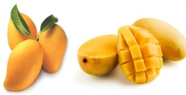 Pregnancy Cravings- Mango